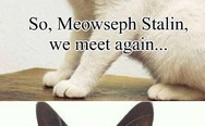 Meowseph Stalin and Kitler