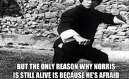 The only reason why Chuck Norris is still alive
