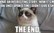 Grumpy cat don't give a sh*t