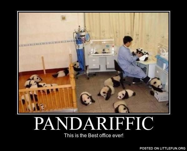 Pandariffic, this is the best office ever