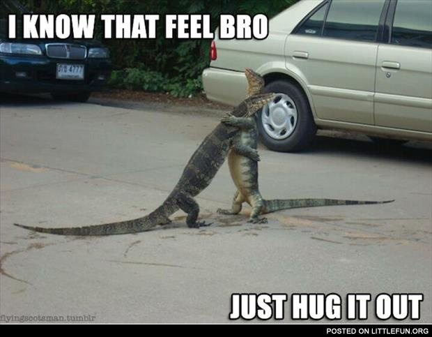 I know that feel bro. Lizards.