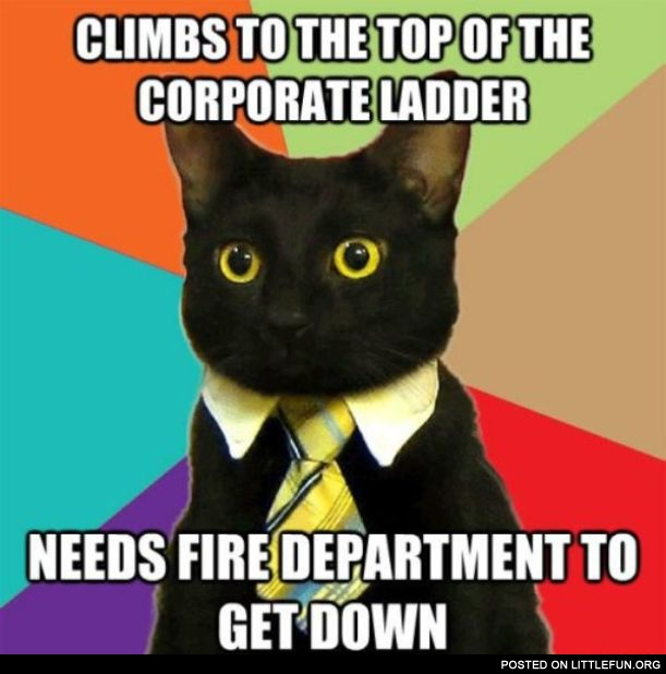 Climbs to the top of the corporate ladder