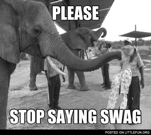 Please, stop saying swag