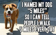 "I named my dog ""5 miles"""