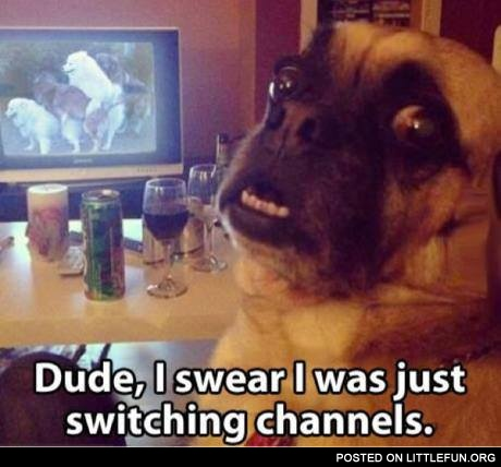 Dude. I swear I was just switching channels