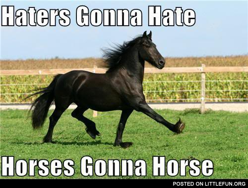 Haters gonna hate, horses gonna horse