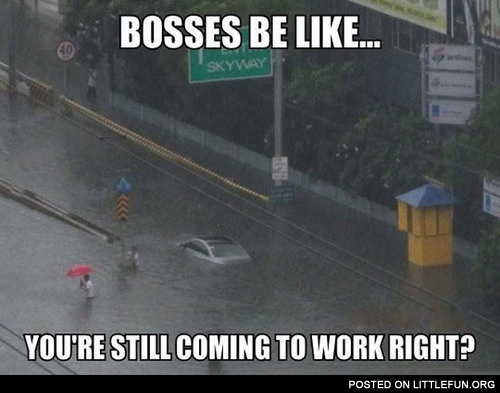 LittleFun - Bosses be like: You are still coming to work ...