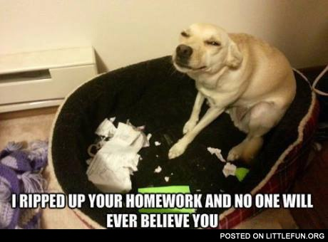 I ripped up your homework and no one will ever believe you