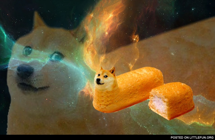 Doge in space