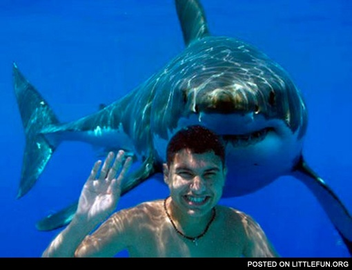 Smiling guy and a shark