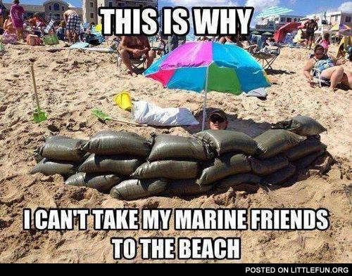 This is why I can't take my marine friends to the beach