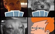 Fry, Leonardo DiCaprio, and stoned dogs playing poker