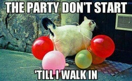The pary don't start 'till I walk in