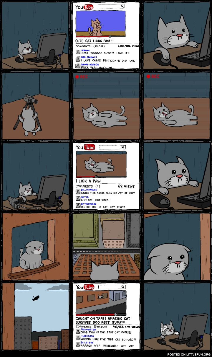 Cat and YouTube