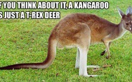 A kangaroo is just a t-rex deer