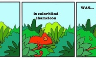 Leonard is colorblind chameleon. Was...