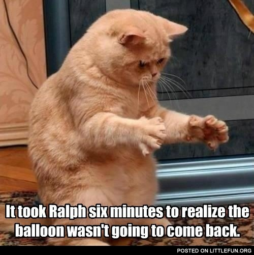 It took Ralph six minutes to realize the balloon wasn't going to come back