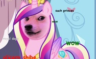 My little doge pony