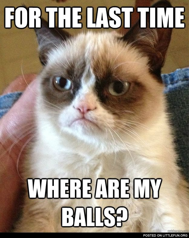For the last time, where are my balls? Poor grumpy cat.