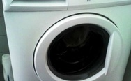 Crazy washing machine. I've washed some sh*t.