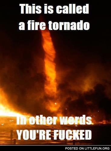 This is called a fire tornado