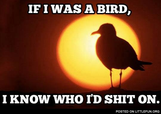 If I was a bird, I know who I'd sh*t on