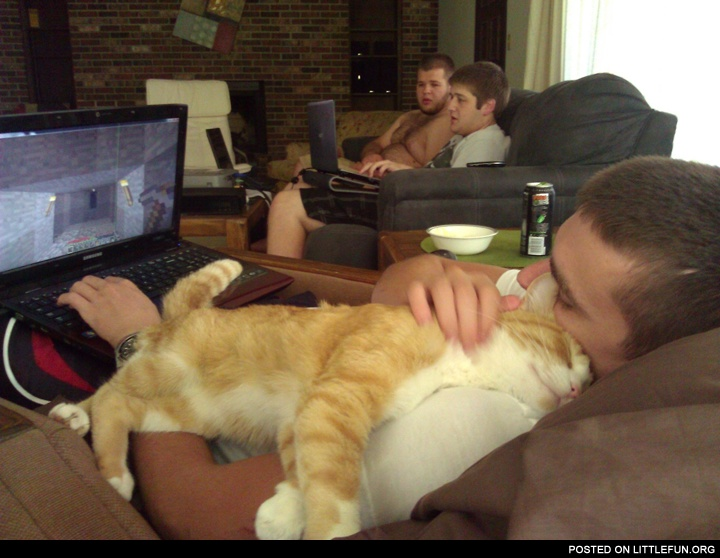 Cat sleeps on its owner while he plays the game on a laptop