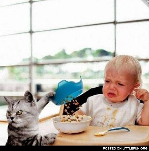 Evil cat and a baby with their breakfast