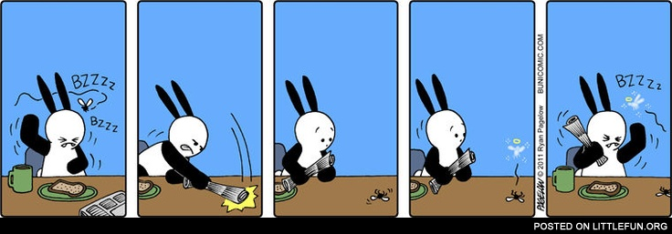 Buni and a fly