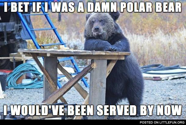 I bet if I was a polar bear I would have been served by now