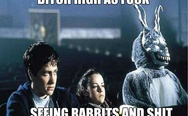 B*tch high as f**k, seeing rabbits and sh*t