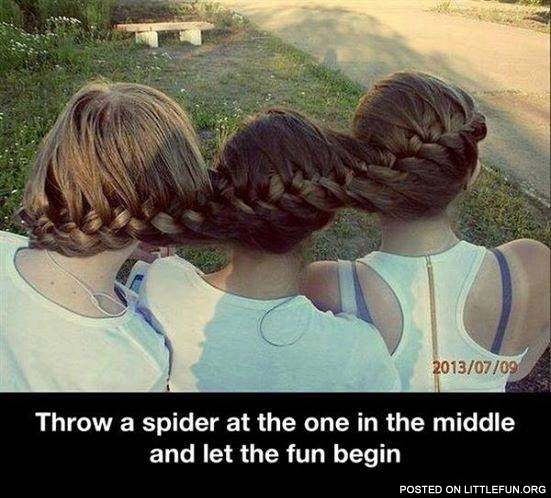Throw a spider at the one in the middle and let the fun begin