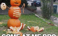 Come at me bro. Pumpkin.