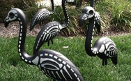 Halloween flamingos