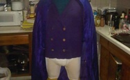 Darkwing Duck costume
