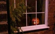 F**k off pumpkin