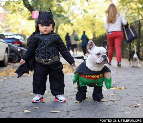 A kid and a dog in batman and robin costumes
