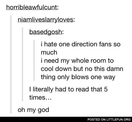I hate One Direction fans so much