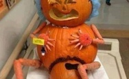 This is how pumpkins are made