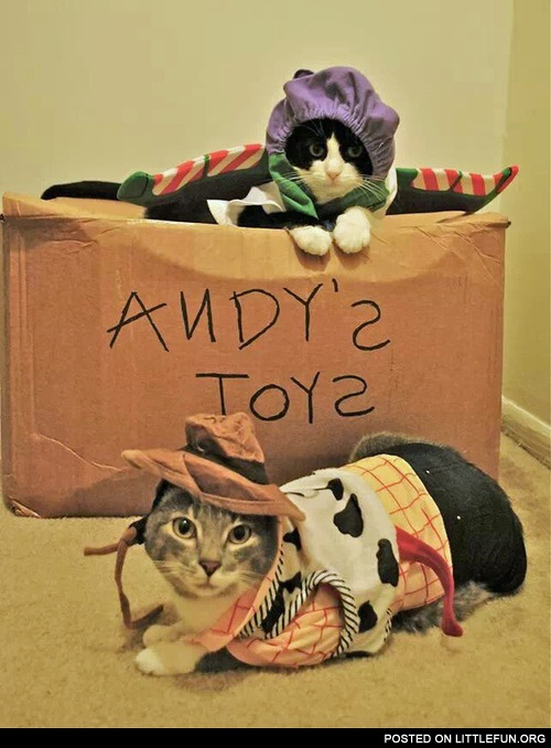 Andy's toys, cats in a costumes