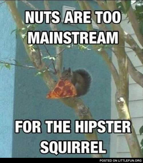 Nuts are too mainstream for the hipster squirrel