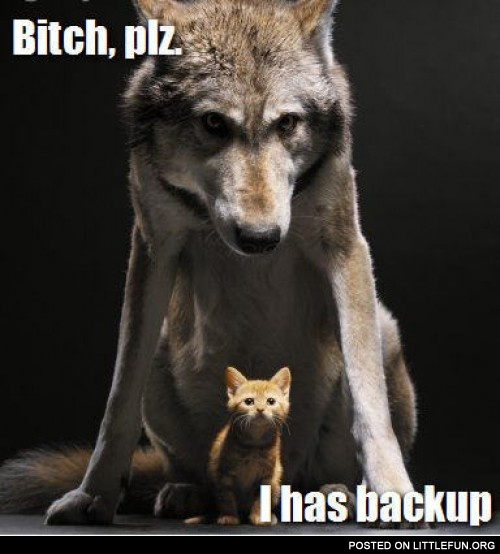 B*tch please, I has backup