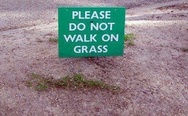 Please, do not walk on grass