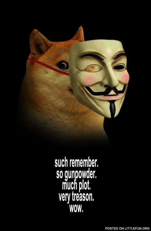 Doge Guy Fawkes