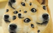 Surreal doge