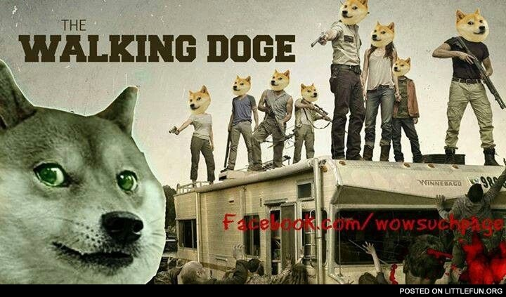 The Walking Doge