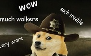 Doge Walking Dead.