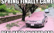 Spring finally came real hard on your car