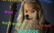 Doge Gandalf, such hair, much wizard.