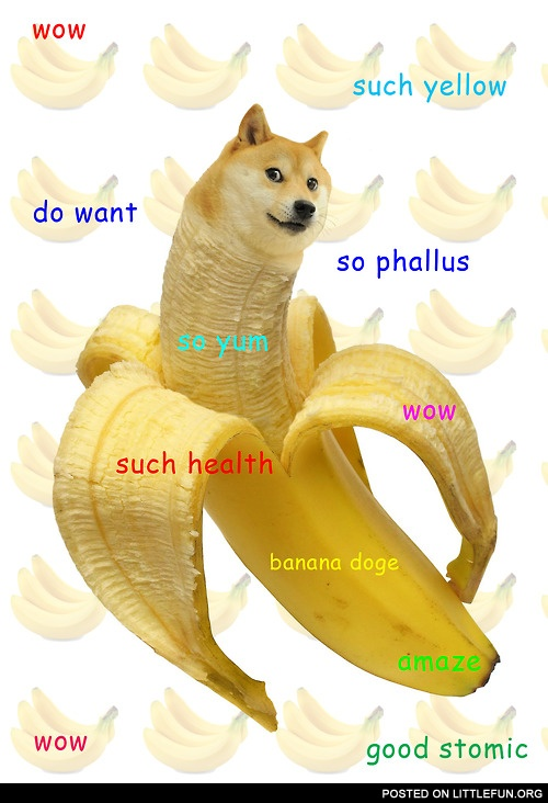 Banana doge. Such yellow, much health.